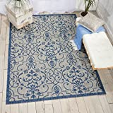 Nourison Garden Party GRD04 Ivory/Blue Indoor/Outdoor Area Rug 5 Feet 3 Inches 7 Feet 3 Inches, 5'3'' X7'3