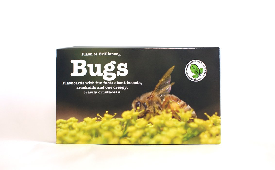 Bug Flash Cards with Fun Facts By Flash of Brilliance