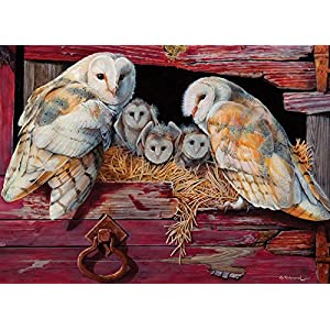 Cobblehill 80052 1000 Pc Barn Owls Puzzle Vari