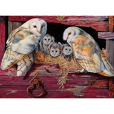 Cobblehill 80052 1000 Pc Barn Owls Puzzle Vari