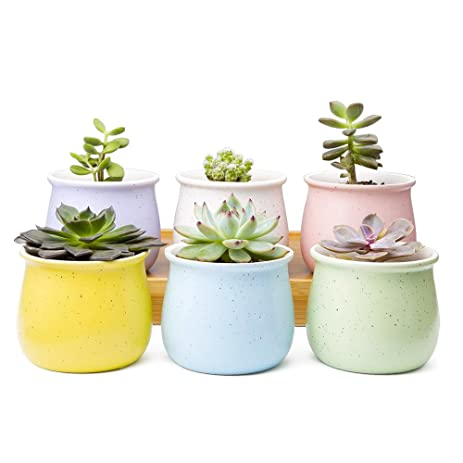 Amazon.com : Mkono Set of 6 Ceramic Small Plant Pots 3 1/2 Inches ...