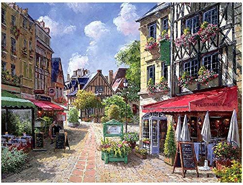 Oil Paint Kits Paint Adult Hand Painted DIY Painting By Numbers-Mediterranean Flower Street 16