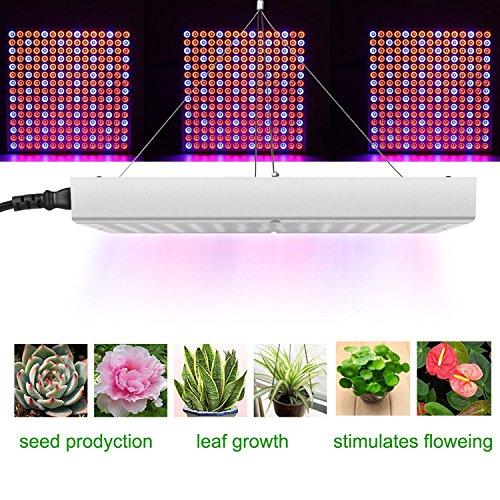 Kshioe Indoor Garden Plant Grow Light LED Grow Light Hanging Light Red Blue 14W Plant Light (P3-14Watts)