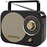 Studebaker Portable Am/FM Radio