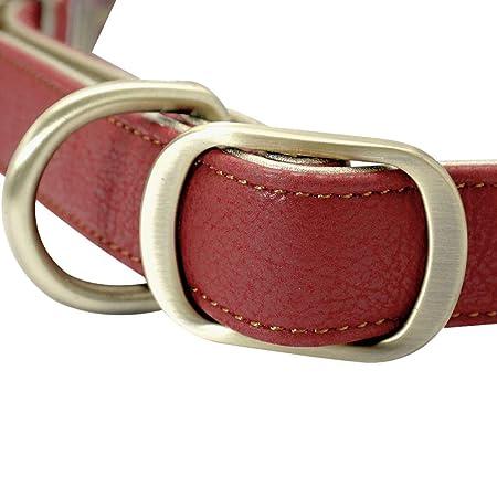 MAOBANG Collar Collar para Perros Collar para Mascotas Pitbull ...