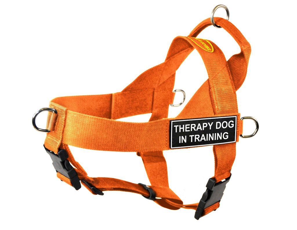 Dean & Tyler DT Universal No Pull Dog Harness with Therapy Dog in Training  Patches, orange, Medium