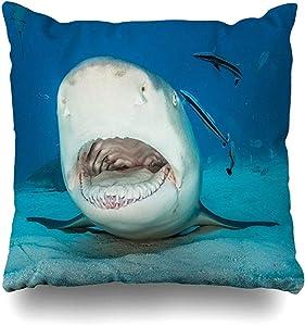 Throw Pillow Case Nature Blue Adventure Lemon Shark Open Mouth On Remora Sand Atlantic Bahamas Beach Caribbean Design Home Decor Pillow Cover Square Size 16x16 Inch Zippered Pillowcase