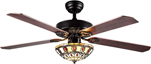 RainierLight Modern Ceiling Fans Led Light
