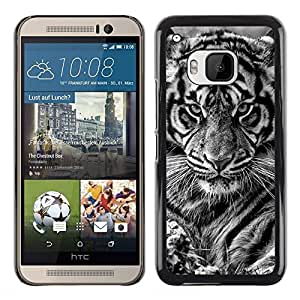 Planetar® ( Tiger Puppy Cub Baby Black White Cat ) HTC One M9 Fundas Cover Cubre Hard Case Cover