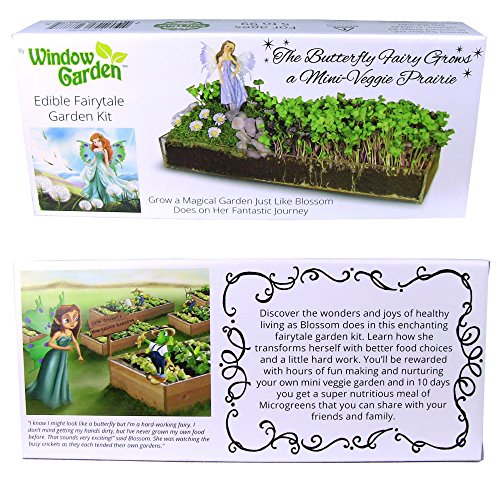 Window Garden Edible Fairy Garden Kit with an Enchanting Fairytale and Accessories