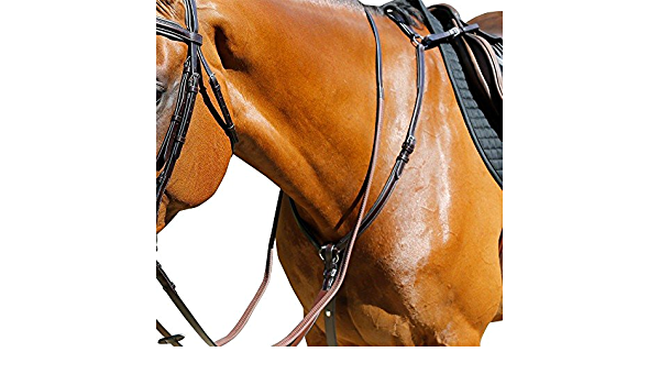Details about  /Mark Todd Performance Elastic Saddlery Breast Plate Black All Sizes