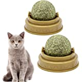 POPETPOP 2 Pack Catnip Balls - Cat Teeth Cleaning Pure Natural Mint Leaf Rotating Interactive Cat Toys - Cat Removal…