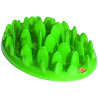 Company of Animals THE Gamelle pour Chien Vert Mini