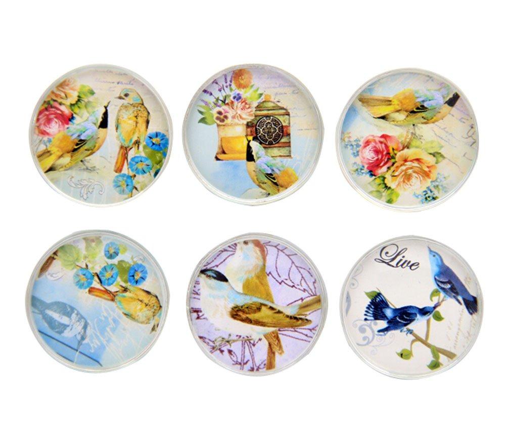 Set de 6 hombre cristal imanes para nevera, pájaros: Amazon.es: Hogar