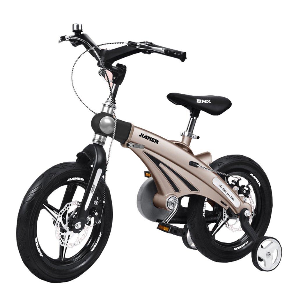キッズ自転車3歳のバイクバイク2-4-6歳のベビーキャリッジ12/14/16インチキッズバイクゴールデン (サイズ さいず : 12inch) B07F2JX3JR 12inch 12inch