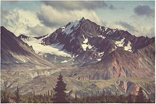 INTERESTPRINT Snowy Nature Wall Art Home Decor, Mountain Landscapes Alaska Tapestry Wall Hanging Art Sets 90 X 60 Inches