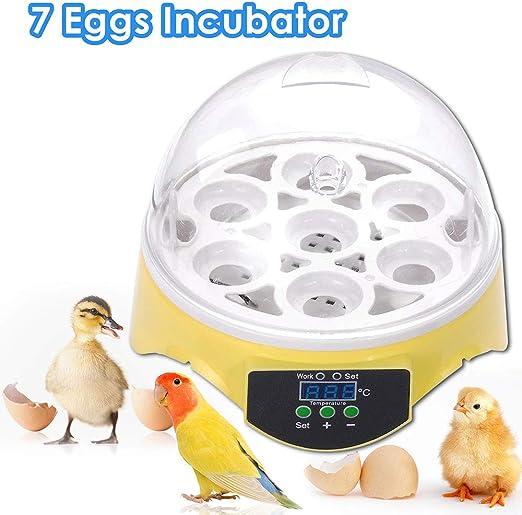 Automatic Clear Digital Chicken Duck Bird 7 Egg Incubator Hatcher Househould USA