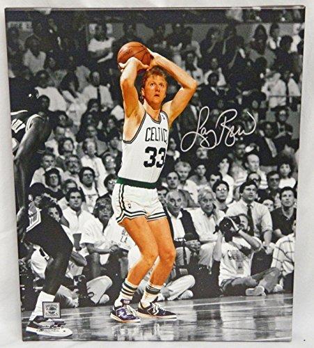 Bird Boston Celtics Jump Shot (Larry Bird Signed Boston Celtics Jump Shot Action Spotlight 20x24 Canvas - Larry Bird COA)