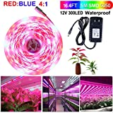 Cheap SPARKE LED Plant Grow Light Strip Kit,16.4ft/5m 5050 Waterproof Full Spectrum Red Blue 4:1 DC12V Growing Lamp with UL Listed 3A Power Adapter for Aquarium Greenhouse Hydroponic Flowers Seeds Growth