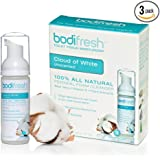Bodifresh Cleansing Foam with Aloe and Vitamin E (Unscented) - Gently Removes what Dry Toilet Paper Leaves Behind- Flushable wipes
