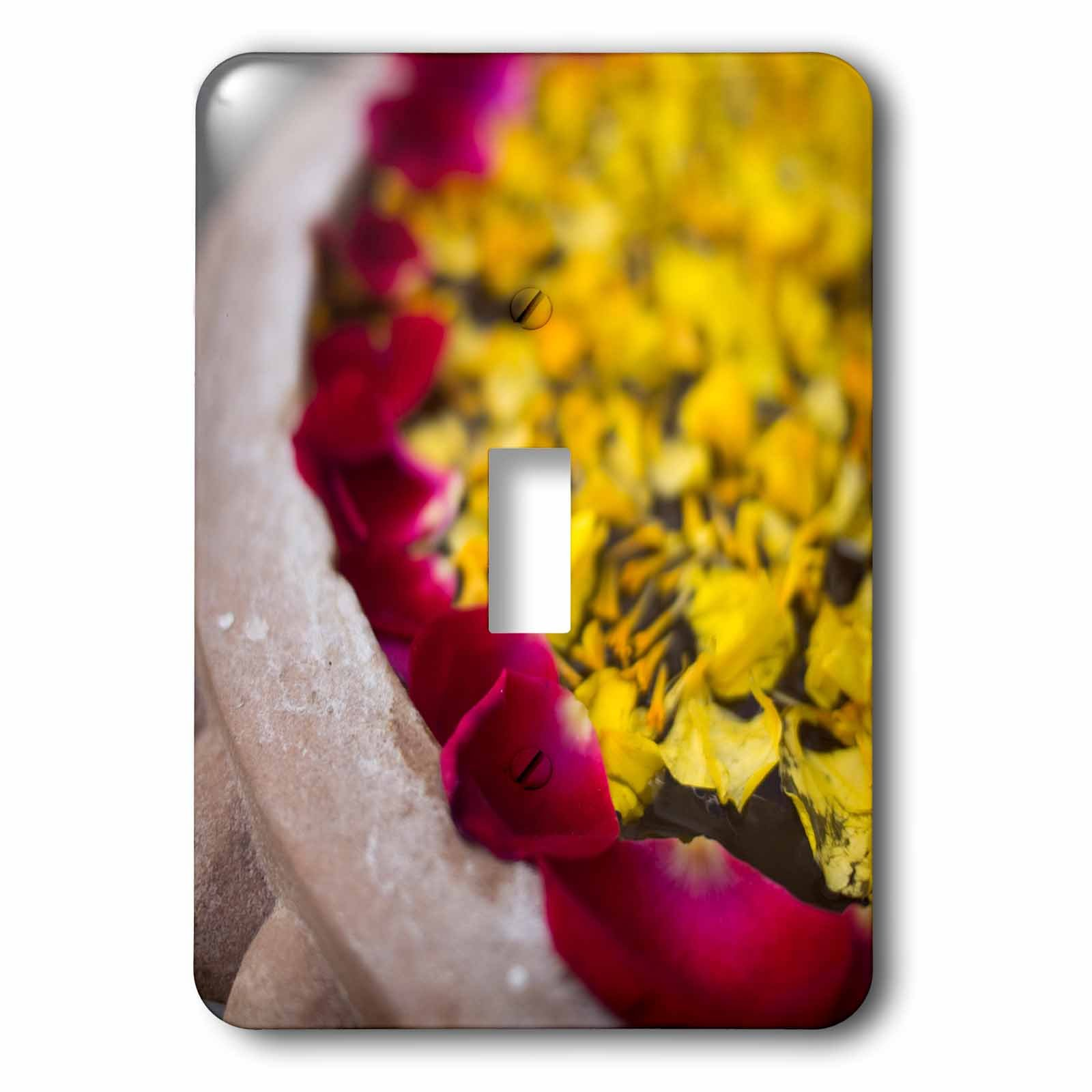 3dRose lsp_187789_1 Flower Petals Floating On Water Surface In Udaipur, Rajasthan, India. - Single Toggle Switch