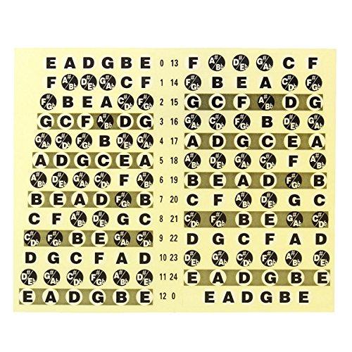Ferre Express - Adhesivo para notas de guitarra, diseño de notas de mástil: Amazon.es: Instrumentos musicales