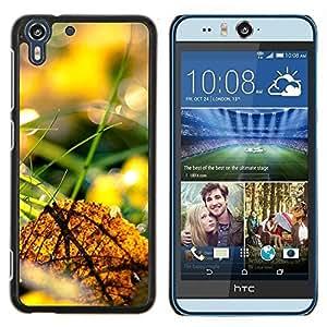 "For HTC Desire Eye ( M910x ) , S-type Naturaleza Hermosa Forrest Verde 44"" - Arte & diseño plástico duro Fundas Cover Cubre Hard Case Cover"