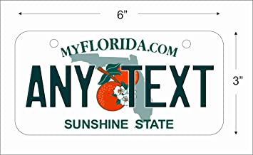Florida State Replica Novelty License Plate for Auto Mini License Plate For Bicycles Bikes  sc 1 st  Amazon.com & Amazon.com: Florida State Replica Novelty License Plate for Auto ...