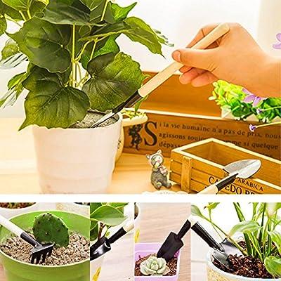 Aries 3 Pcs Mini Gardening Hand Tools Sets Spade Shovel for Flower Pot Vegetables Kids Indoor Miniature Plants Care