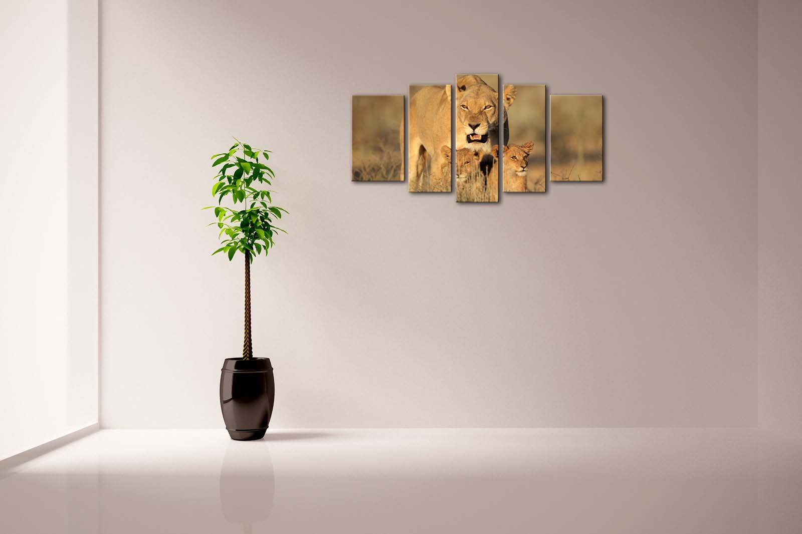 First Wall Art - 5 Panel Wall Art Lioness With Cubs In Early Morning Light Kalahari Desert South Africa Grass Painting Pictures Print On Canvas Animal The Picture For Home Modern Decoration piece (Stretched By Wooden Frame,Ready To Hang)