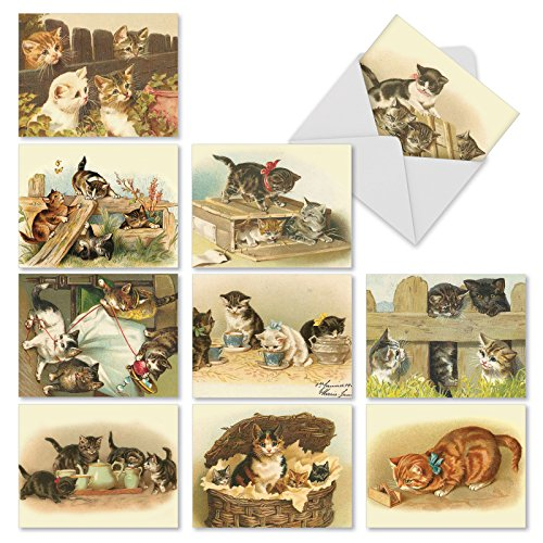 Assortment of 10 Blank Cat Themed Note Cards with Envelopes - Adorable 'Cutey Cats' Kitten Blank Greeting Cards 4 x 5.12 inch for All Occasions M1732BNsl