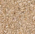 CaribSea Dry Aragonite Special Grade Reef Sand 15 lb from CaribSea