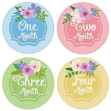 Amazon Pambo Monthly Baby Stickers Waterproof Milestone