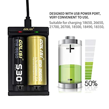 Lorenlli Golisi Needle 2 Charger 2 Ranuras Cargador de batería Recargable con Puerto de alimentación USB 5V 1A para 18650 26650 21700 Li-Ion