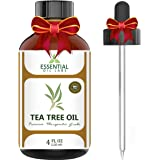 Tea Tree Oil - 100% Pure and Natural Therapeutic Grade Australian Melaleuca Backed by Medical Research - Large 4 fl oz - with Premium Glass Dropper by Essential Oil Labs
