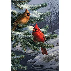 Toland Home Garden Two Cardinals 12.5 x 18 Inch Decorative Winter Bird Pine Tree Garden Flag