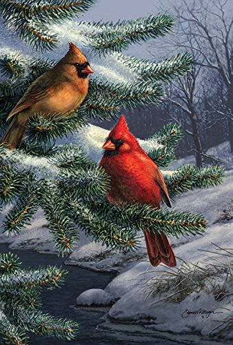 - Toland Home Garden Two Cardinals 28 x 40 Inch Decorative Winter Snow Bird House Flag (1010432)