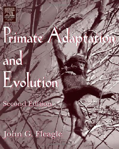 Download Primate Adaptation and Evolution Pdf