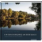 Ein Spaziergang an der Saale: Vom Pfingstanger zum Galgenberg