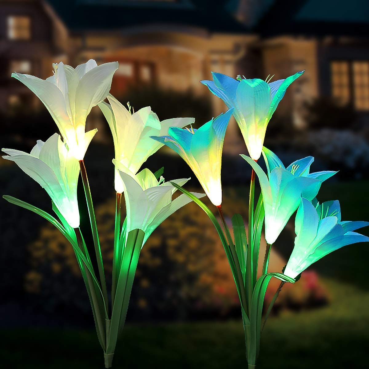 Tvird Outdoor Solar Garden Stake Lights,Solar Garden Lily Lights,2 Sets Solar Flowers with 8 Flowers,Multi-Colors Changing LED Decorative Lights Suit for Garden,Patio, Backyard(Blue and White)