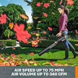 WORX WG931 20V Power Share Cordless Grass, Hedge
