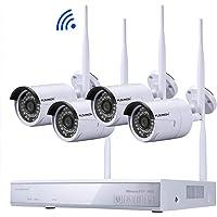 FLOUREON Kit de Seguridad NVR 4CH 1080P HDMI inalámbrico WLAN CCTV NVR DVR 1.0MP Cámara IP de Seguridad, P2P, HD Imagen, IR-Cut, Detección de Movimiento (4CH 1080P NVR+720P Cámaras)