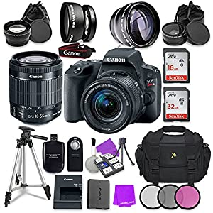 Canon EOS Rebel SL2 Digital SLR Camera with Canon EF-S 18-55mm IS STM Lens + Accessory Bundle