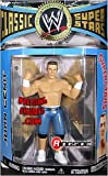 MATT HARDY WWE WWF Exclusive No Way Out Series 2 figures