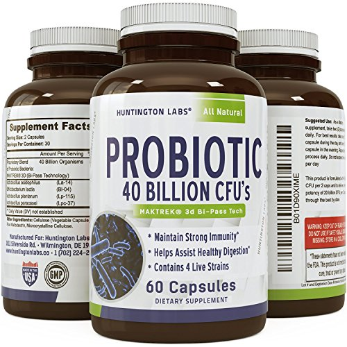 Best Probiotics Supplement Support Increase Beneficial Bacteria For Healthy Digestive Support   Immune System Booster That Controls Appetite   Promotes Weight Loss For Women   Men By Huntington Labs