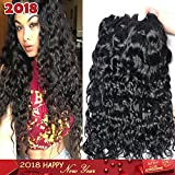 Iwish 3 Bundles of Brazilian Hair Water Wave Real Human Hair Bundles Deals Brazilian Virgin Hair Wet and Wavy Weave Extensions (22 24 26, natural black)