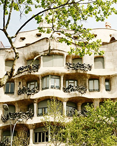 Barcelona Library Wall (Barcelona Spain Photography Print - Gaudi Architecture Photo - Gaudi House)