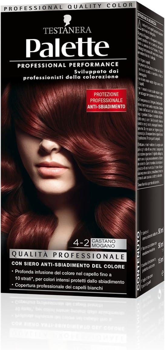 PALETTE 4-2 Castano Mogano Productos para el pelo