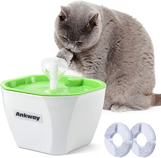 Ankway Bebedero Gatos, Fuente para Gatos Automático Bebedero para Mascotas 1.6L con filtros de Carbón y Detector de Nivel de Agua, Dispensador de Mascotas Silenciosa para Gatos y Perros: Amazon.es: Productos para