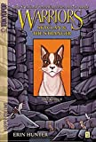 Warriors: SkyClan and the Stranger #1: The Rescue (Warriors Manga, Band 1)